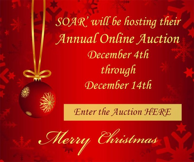 Auction2017