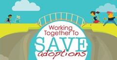 SaveAdoptions_BRIDGE__3_
