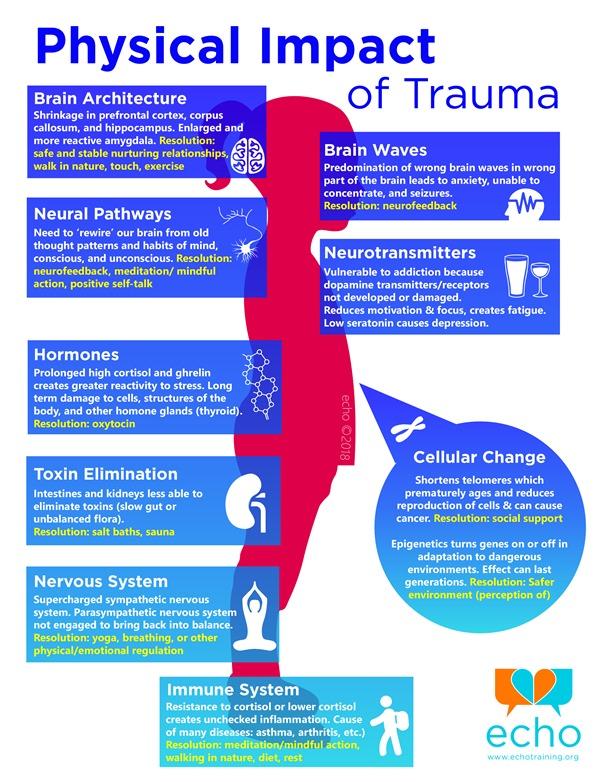 Physical-Impact-of-Trauma